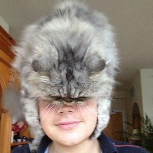 这个皮草帽子真不错!~